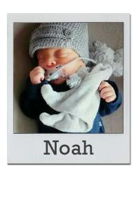 babyfoto noah