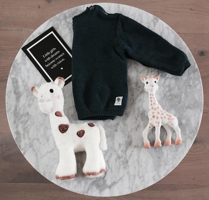 sophie de giraf babyspeelgoed