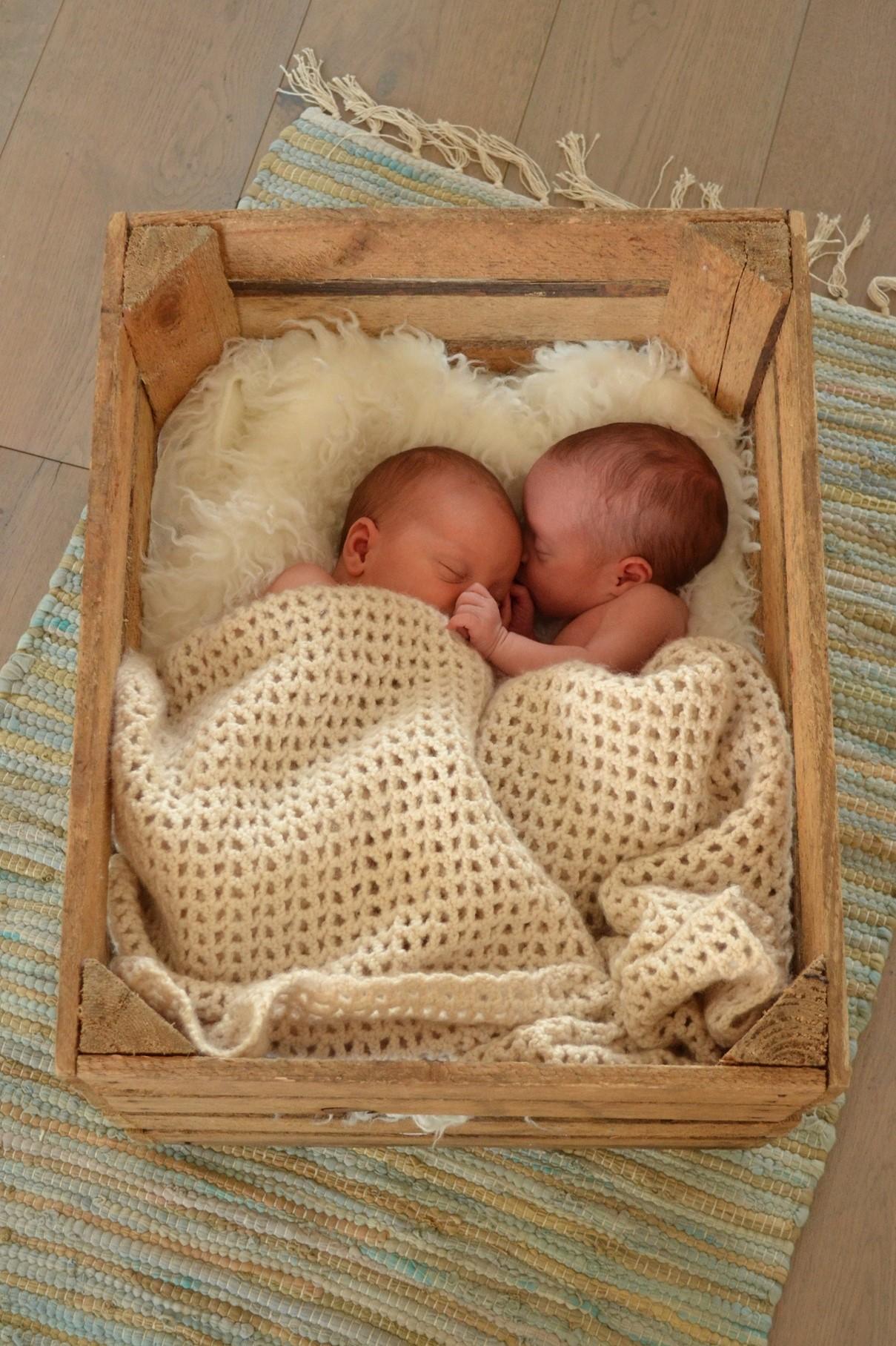 twee eiige tweeling, tweelingmama, jongensmama, geboorte van een tweeling, babylabel