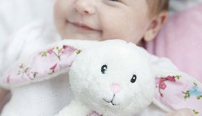 Schattige knuffelkonijntjes, babyknuffels