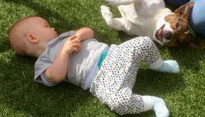 baby en hond, hoe combineer je baby en hond samen