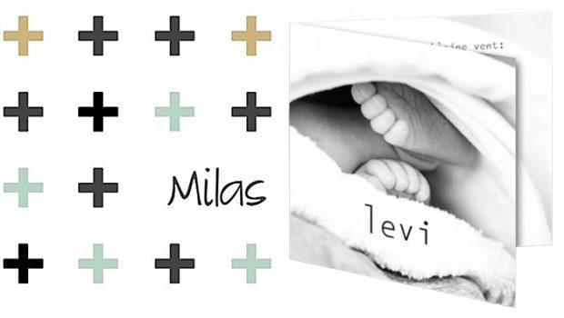 geboortekaartje zoon, baby jongen, babykaartje jongen