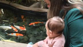 vakantie met een baby, eerste keer vakantie met baby