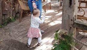 eerste baby stapjes, baby leren lopen