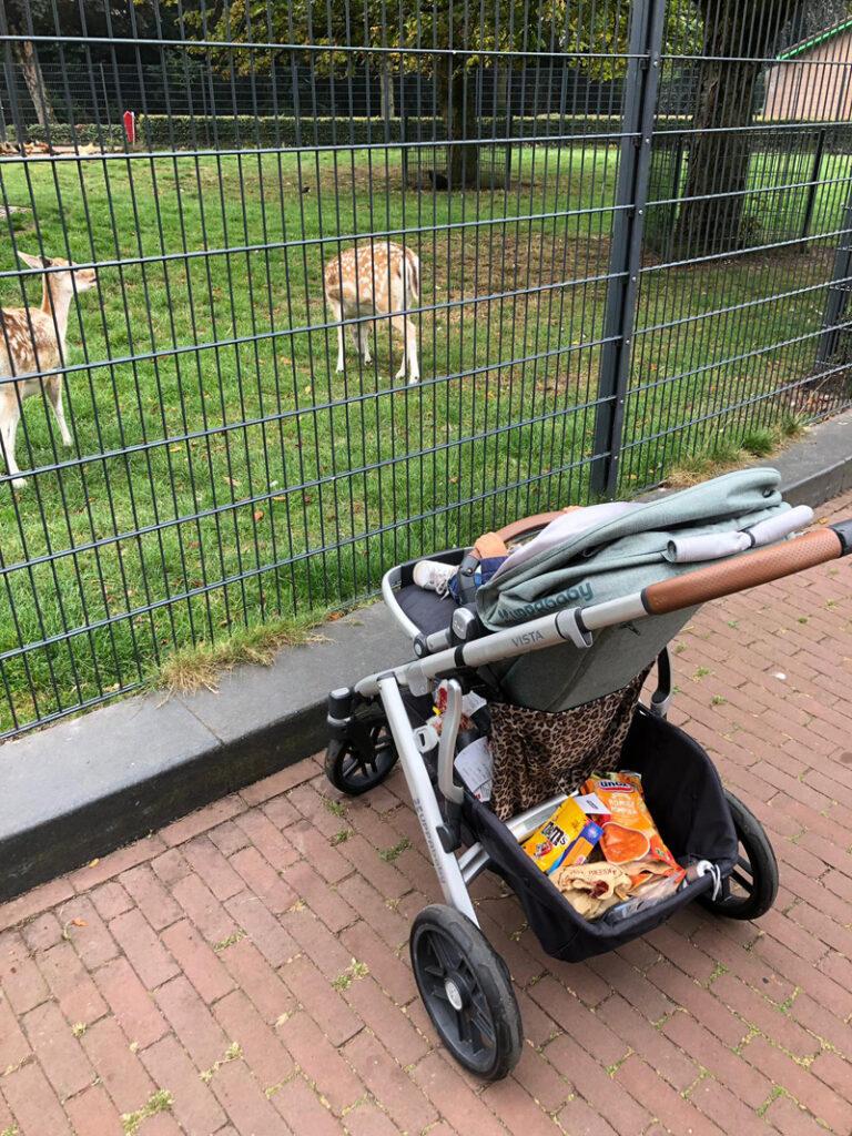 wandelen met je kleintje