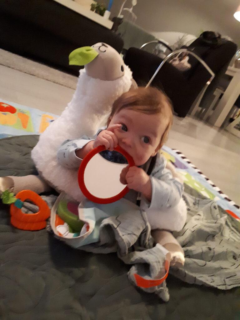 liglama, fisher price, babyspeelgoed, baby 5 maand speelgoed, baby 6 maand cadeau