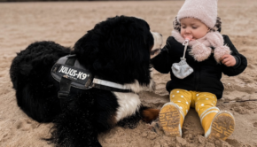 huisdier, wel of geen hond nemen, Je kind laten opgroeien met een huisdier